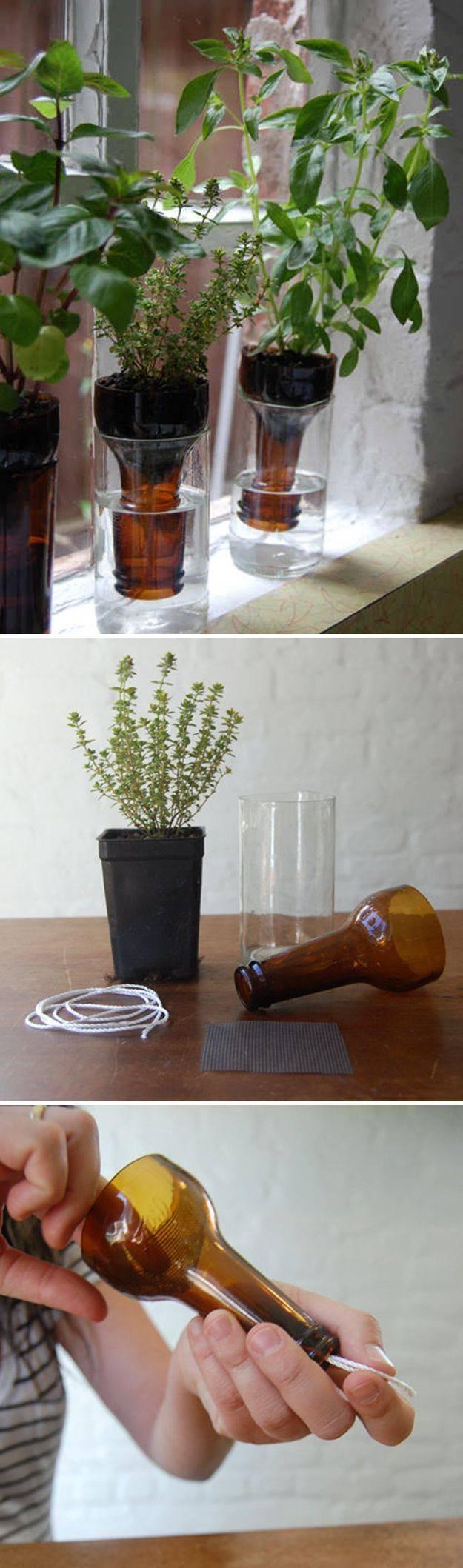 和玻璃杯合作,做自动灌溉花瓶,也是亲密无间默契配合.