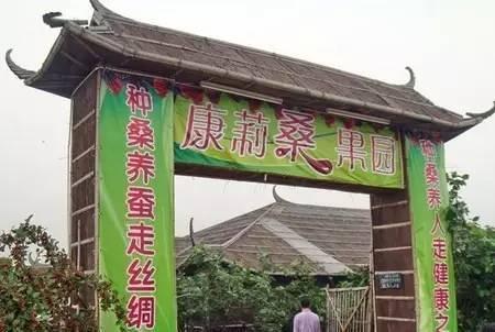 生态农庄大门图片大全_生态大门_生态餐厅大门图
