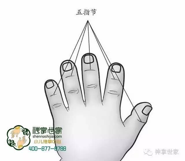 掐揉五指节 用拇指指甲掐手背拇指间关节和其他四指远端关节处,称掐图片
