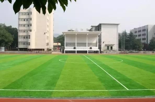 邵阳市第二中学挺作文初中我要住图片