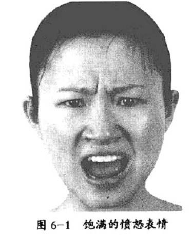 饱满的愤怒表情图片