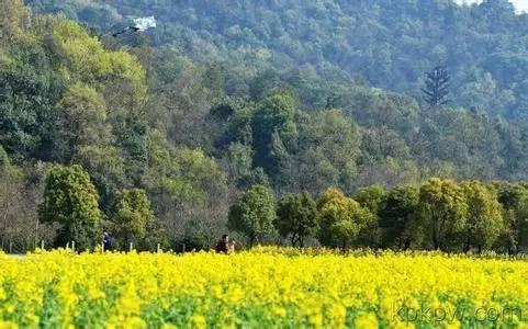 这线路传说中的杭州环西湖图纸毅行就是,全程中的经典,群山25公里.层经典5楼中楼v线路别墅图片