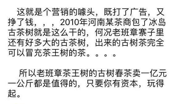 """32万每公斤老班章古茶树""""摇钱树""""下的沉思"""