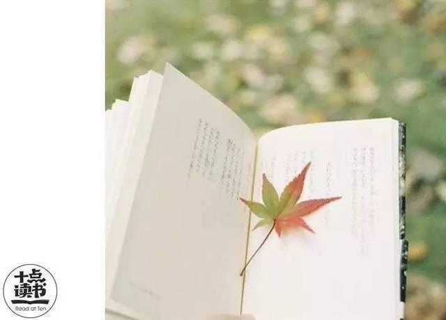 只要给自己一段远离喧嚣的时间,沉静尘心,翻取书页图片