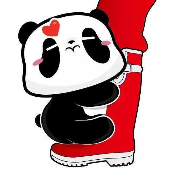 的熊猫仔,靠抱饲养员大腿成国际 网红