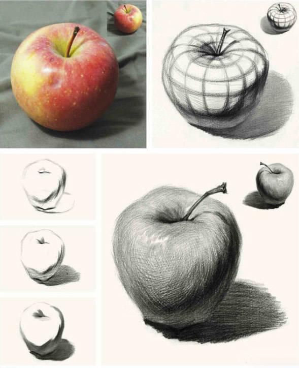 素描| 不要教你画苹果,你就只会画苹果图片