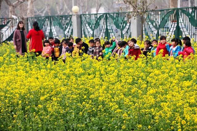 """广平第一幼儿园把课堂""""搬""""进大自然"""