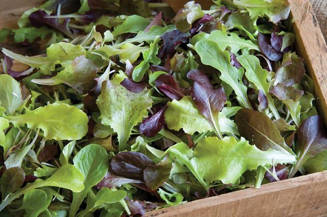 不下来也轻松瘦节食?10种食品让你边食边购物家家减肥产品图片