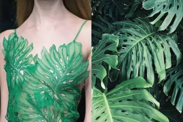 色彩与灵感|融合自然的服装艺术,美得让人心醉!图片