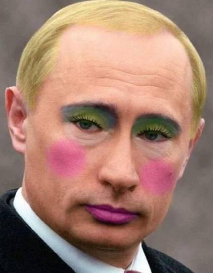 报 普京大帝Gay里Gay气,一米八大汉居然卖萌喵紫紫摇头表情包v普京图片