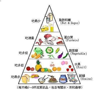 健康饮食的营养金字塔,你今天的饮食均衡吗