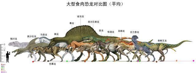 战斗并杀死了霸王龙也由此产生了霸王龙和棘背龙到底谁更厉害的争论.