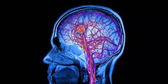 脑梗的原理是什么意思_白带是什么图片