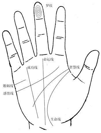 手相学大全气色,手型,手指等等看你不知道的命运
