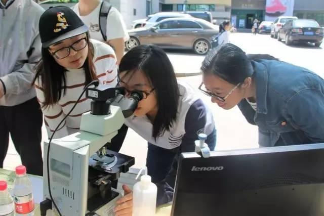 """观察""""微生物体验与计数""""实验高中顺德私立图片"""