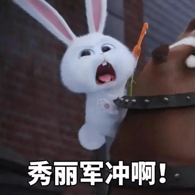 粉丝用赵丽颖喜欢的大兔砸萌萌表情包宣传楚乔传