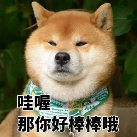 """在表情包这场战争中,""""戏精""""柴犬完胜二哈!图片"""