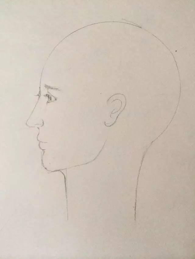 画尺子侧脸,拿出几何和人头跟我上一堂圆规课单张百乐必赢技法图片