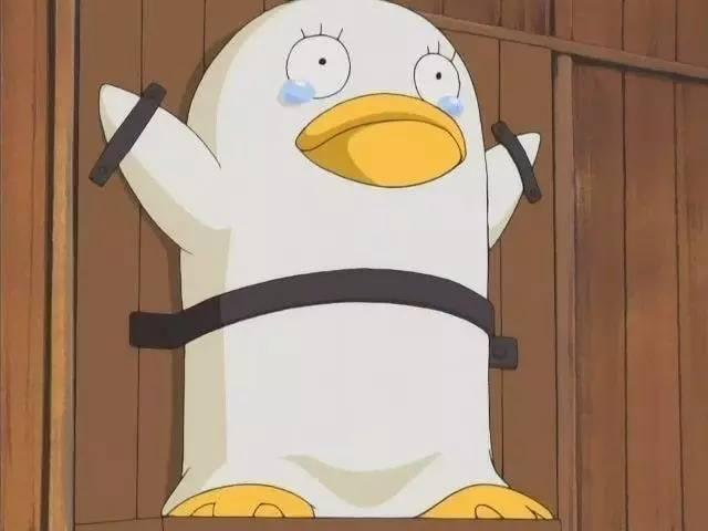 《银魂》中的伊丽莎白酱是一只可爱白鸭子 围绕它的表情包大概有图片