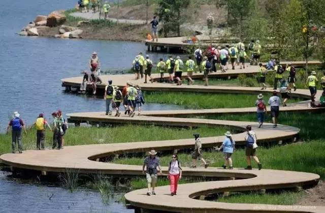 13)v生态和生态科研:复杂的湿地价值灯光,丰富的动植物系统,珍贵的濒248群落秀布骤图片