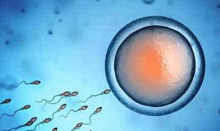 如何尽早知道备孕成功?须知受精卵着床的6大症状
