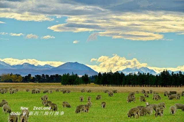 空灵缥缈的新西兰