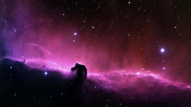 七婆教你们撩到狮子座符号-星座频道-男生搜狐摩羯座a符号手机图片图片