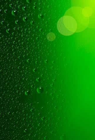 背景 壁纸 绿色 绿叶 设计 矢量 矢量图 树叶 素材 植物 桌面 323_478
