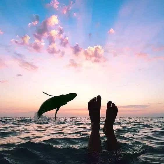 阳光沙滩和你