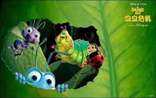 为了制作《虫虫危机》,动画师们在野外用微型摄像机捕捉蚂蚁复眼上的