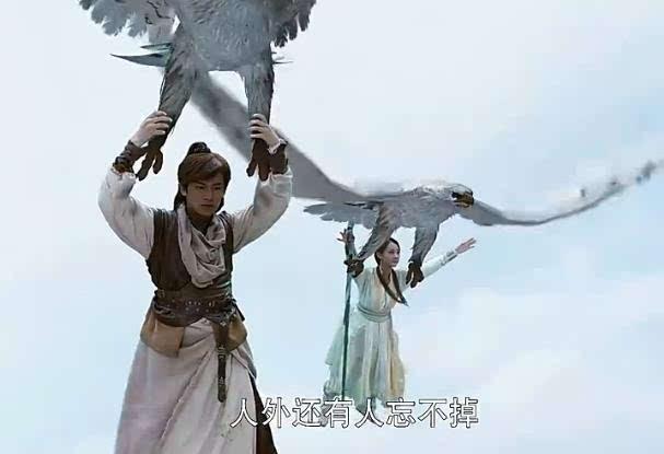 龙女也被神雕救走的的情节,就是不知道杨过的雕和郭靖的雕有没有关系.