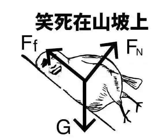 玄学物理,你,值得拥有.图片