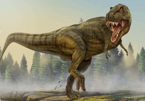 特暴龙猎杀食草恐龙