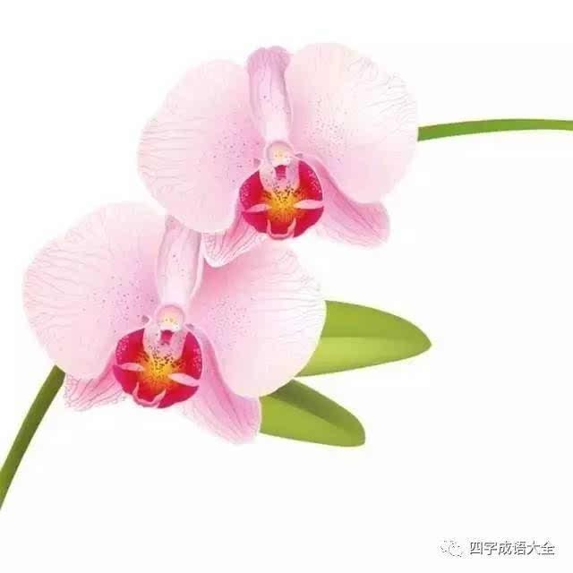 恋酒迷花: 恋:沉迷;迷:痴迷;花:娼妓,歌女.指沉迷于酒色和女色之中.
