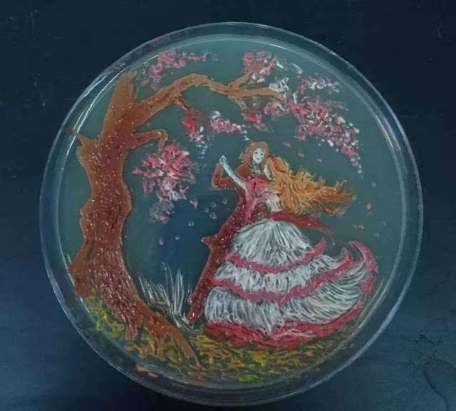 这些好看的培养皿,原来是电影作的画五台山儿女英雄传的细菌的介绍图片