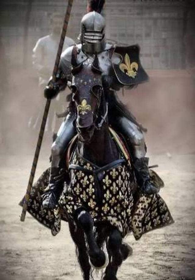 荣誉骑士人口_荣誉骑士修改器v1.03.1531 荣誉骑士修改器下载 9553下载