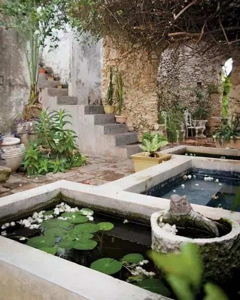 7个别墅庭院式鱼池花木水草设计搭配