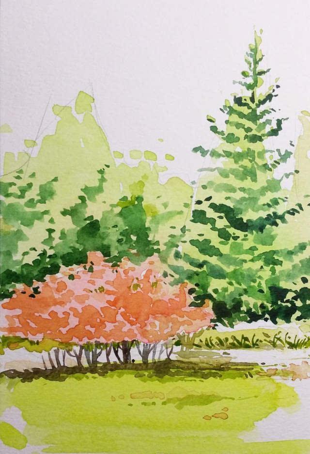【第8步】:继续深化远景树木的细节,注意树叶层次的变化图片