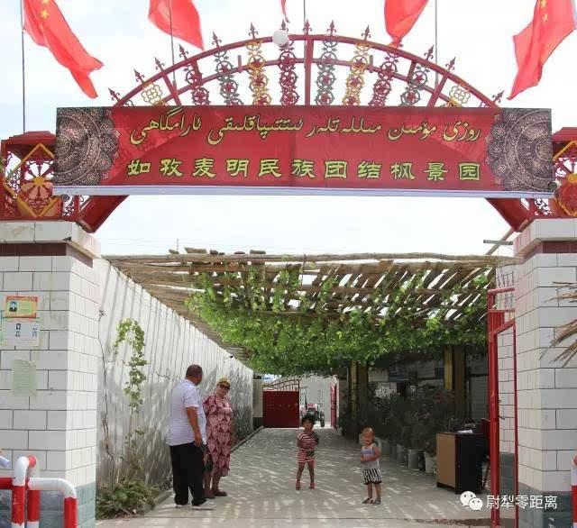 尉犁镇阿牙克村肉孜·买明家的风景园