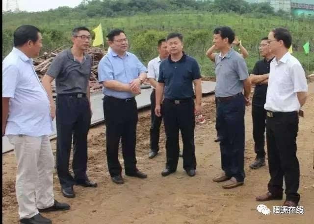 武汉市环保局长督查阳逻陈家冲垃圾场环境整改
