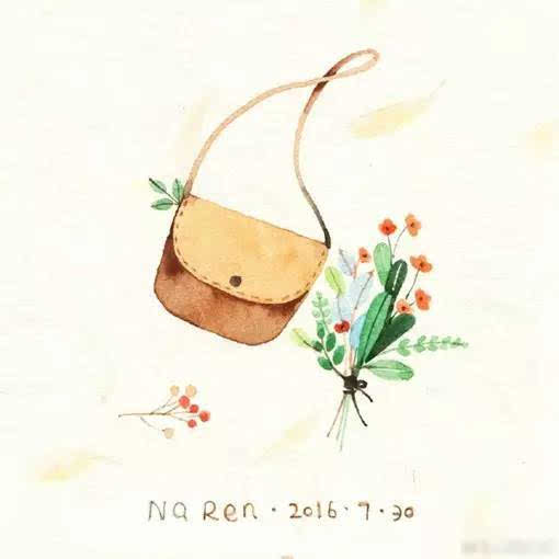 手绘插画图片,色彩艳丽,刻画细腻,画了些包包,花朵植物等女生最爱的