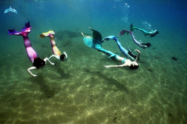 adex海洋节首届美人鱼大赛开赛啦!想看上百位美人鱼集图片