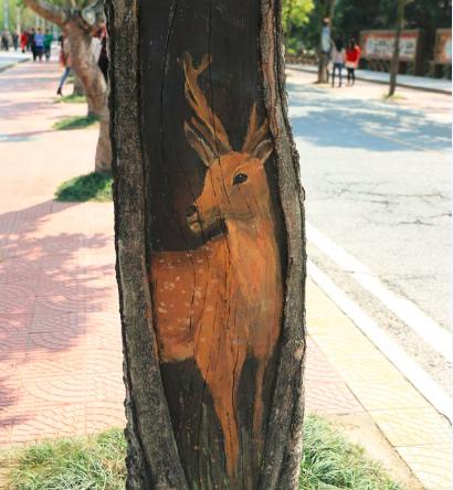 这些3d树洞画到底有多吸引人?大胡建萌萌哒!
