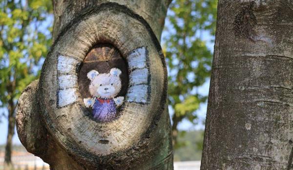 这些树洞画因树制宜,根据树洞的实际大小以及虫害部位绘制合适的动物图片