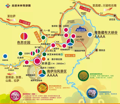 ps:从米林县城或者米林机场出发,行至江对岸,便是这条清幽的桃花大道图片