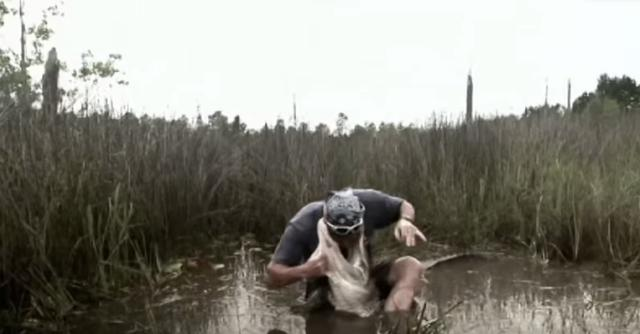 鳄鱼巨大的咬合力让他痛苦不堪