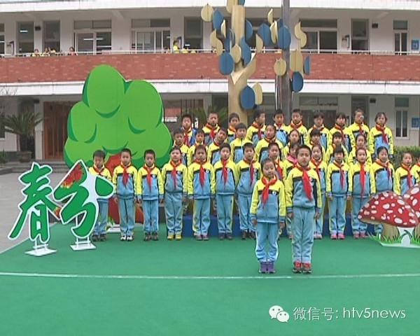小学生放风筝迎传统节气