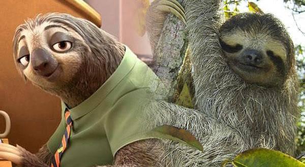 树懒的动物园哟(美洲动物区)