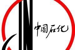 中国最大的地方性石油公司陕西延长石油(集团)有限