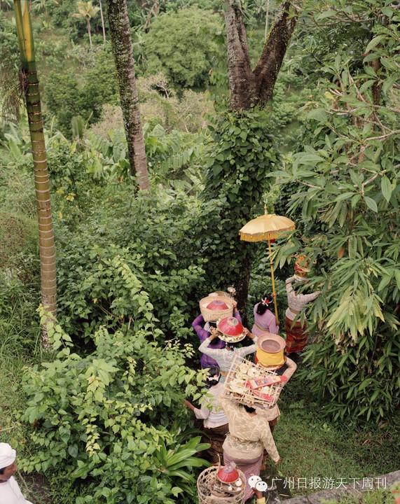巴厘岛绿色村庄